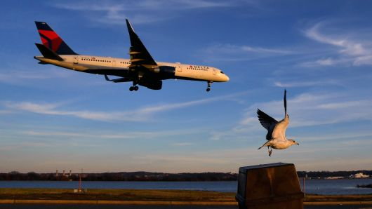 As an airliner prepares to land, a bird takes off at the Gravelly Point park that