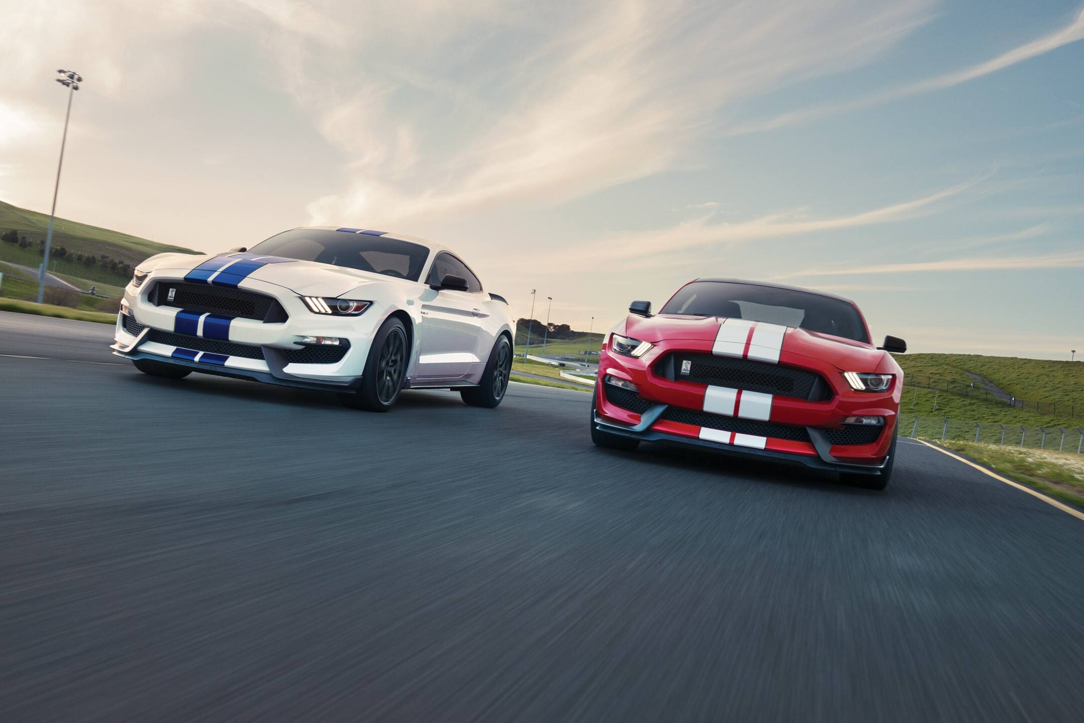 Preview of the Shelby Mustang GT350 is fast and fun at $59,000