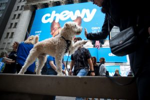 Chewy, PetSmart's online business, soars 86% at IPO