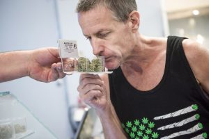 Marijuana use among baby boomers rose tenfold over decade as seniors seek out pot for medical treatment
