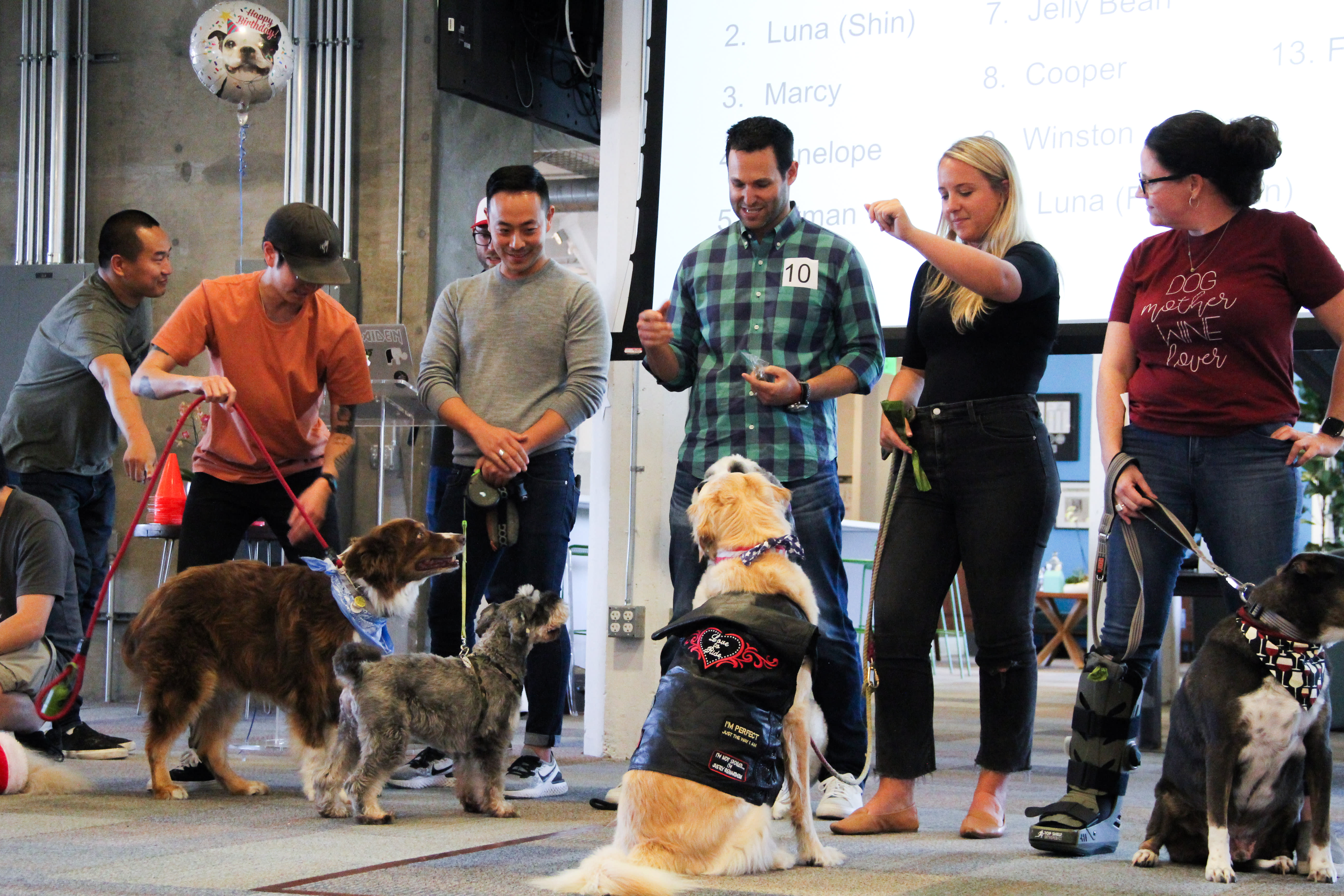 AdRoll's annual dog show is a celebration of the company's pet friendly culture