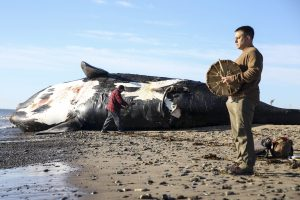 Right whale is one step from extinction climate change pushes it north